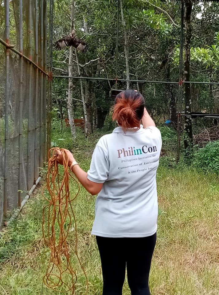 rhea in reha - flightmuscle training birds